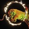 Цирки в Искитиме